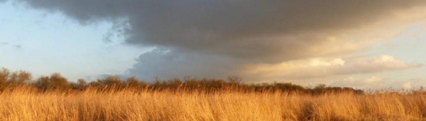 A la découverte du marais du Pendé