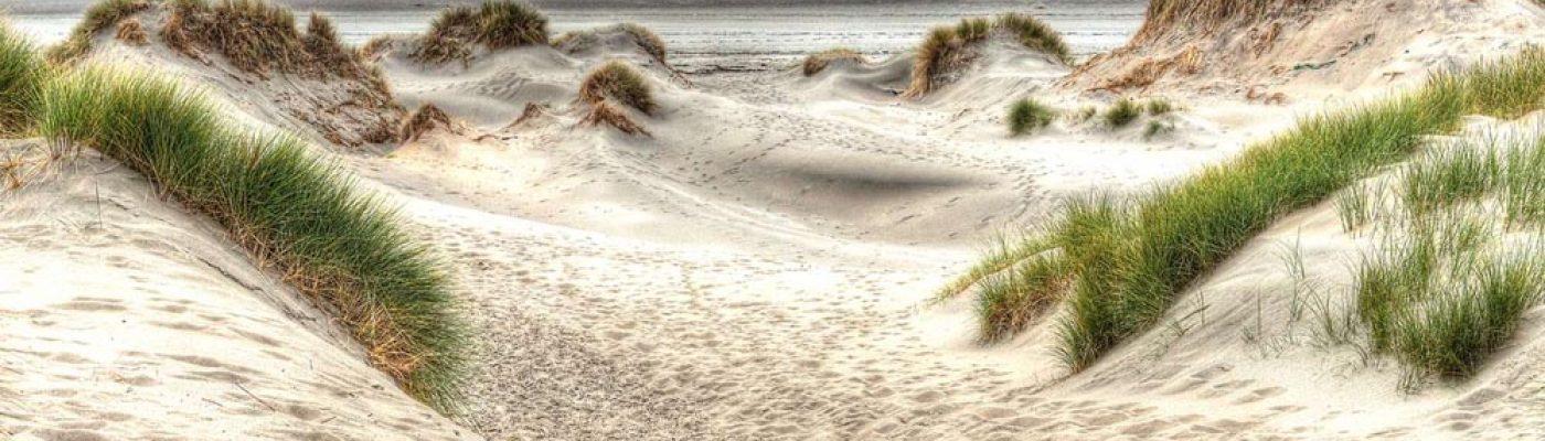 Les côtes sableuses picardes